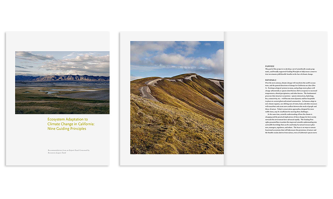 Cover and interior spread Resource Legacy Fund capital campaign brochure